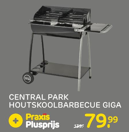 Central Park houtskool barbecue folder aanbieding bij Praxis